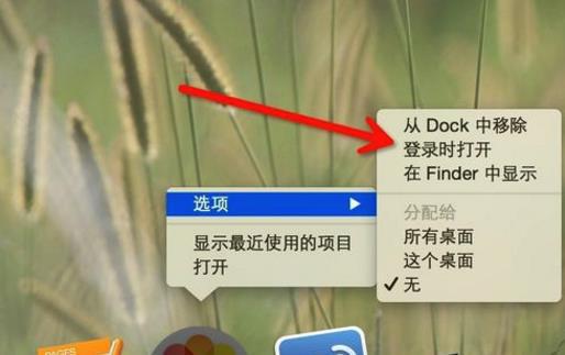 mac一键设置软件开机自动启动教程