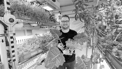 德国北极科考营地多种蔬菜种植成功