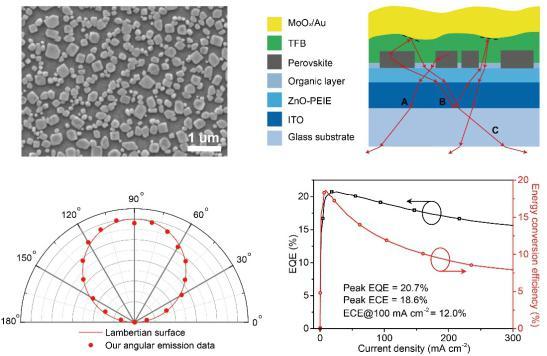 我国钙钛矿发光二极管外量子效率突破20%