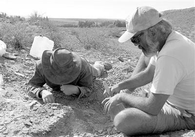 科学家在阿根廷中部内乌肯省发现新的恐龙物种