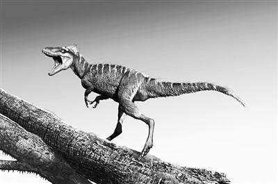 新种小型恐龙填补北美化石纪录空白