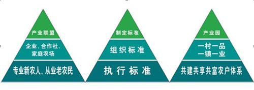 廣州絲苗米聯盟保障農産品質量