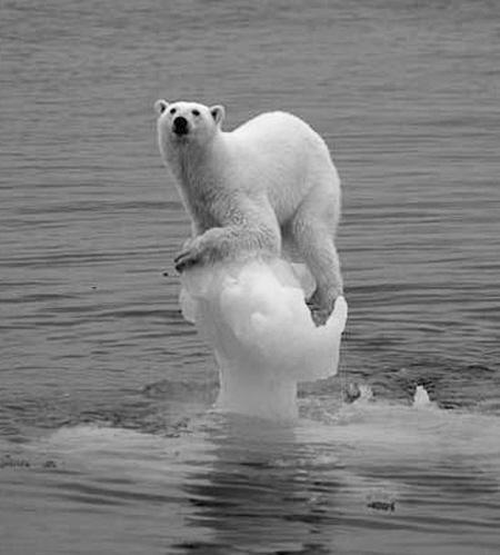 气候真的在变化吗 科学证据举证全球变暖