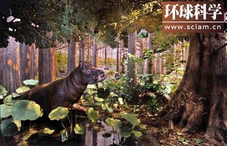 图:耐寒的动物.冠齿兽在漆黑的北极冬季以树枝和枯叶为食.-环球