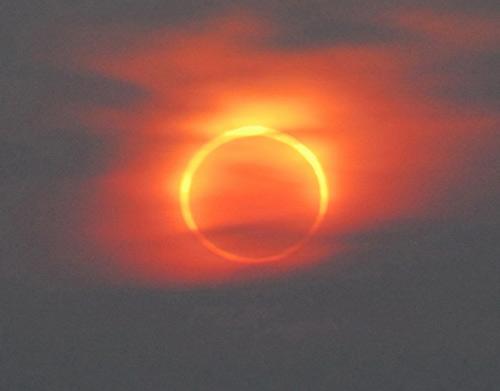 夕阳中,日环食食甚,用肉眼就可以观测 赵亚辉 摄